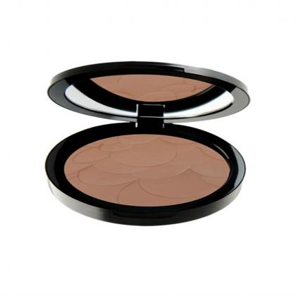 profashion-advanced-powder---25